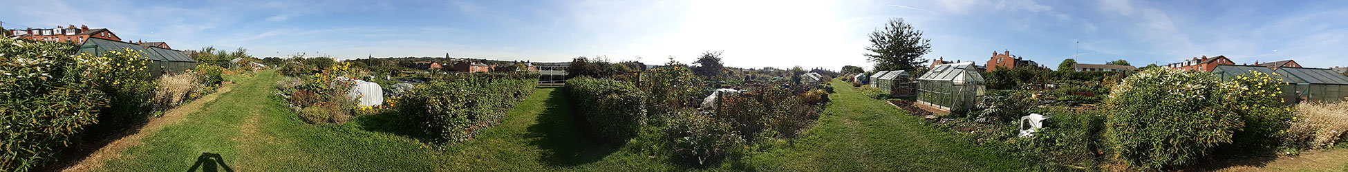 allotment operation